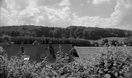 Das Tal der Kraniche