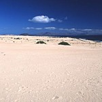 Sanddünen Corralejo Fuerteventura