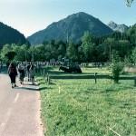 Bad Hindelang: Viehscheid