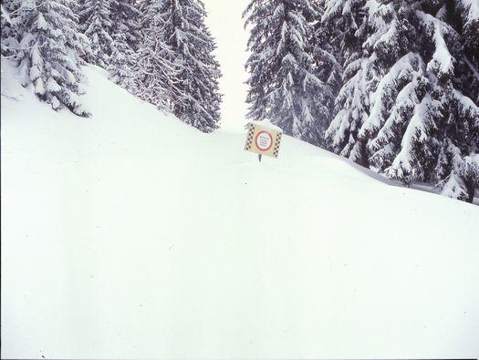 Alpen 2011
